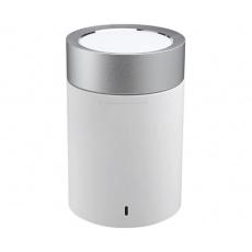 Mi Pocket Speaker 2(White)